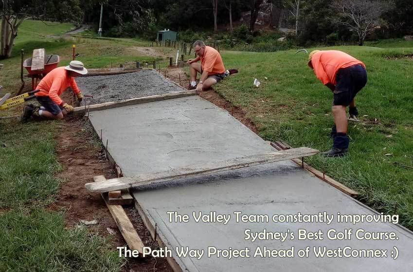 the path way project ahead of westconnex